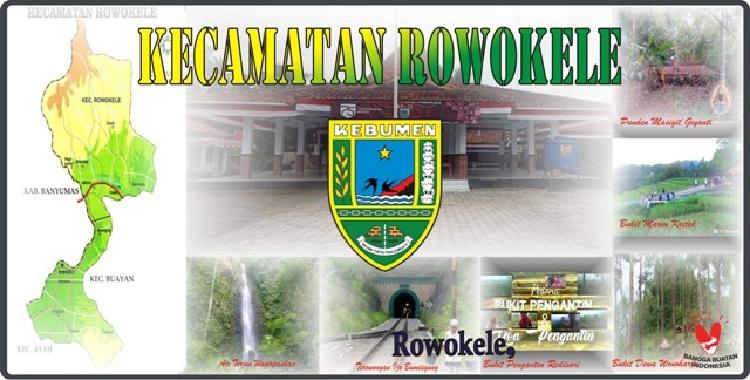 Website Resmi Kecamatan Rowokele